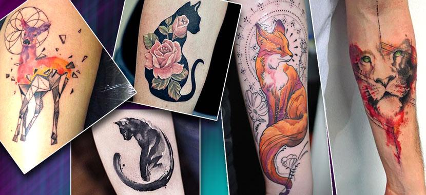 Женские татуировки расположены на руке с кисками, лисой и др.
