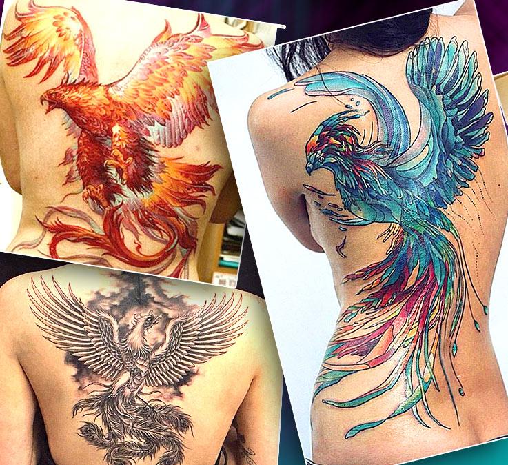 Женские тату на спине с птицей феникс