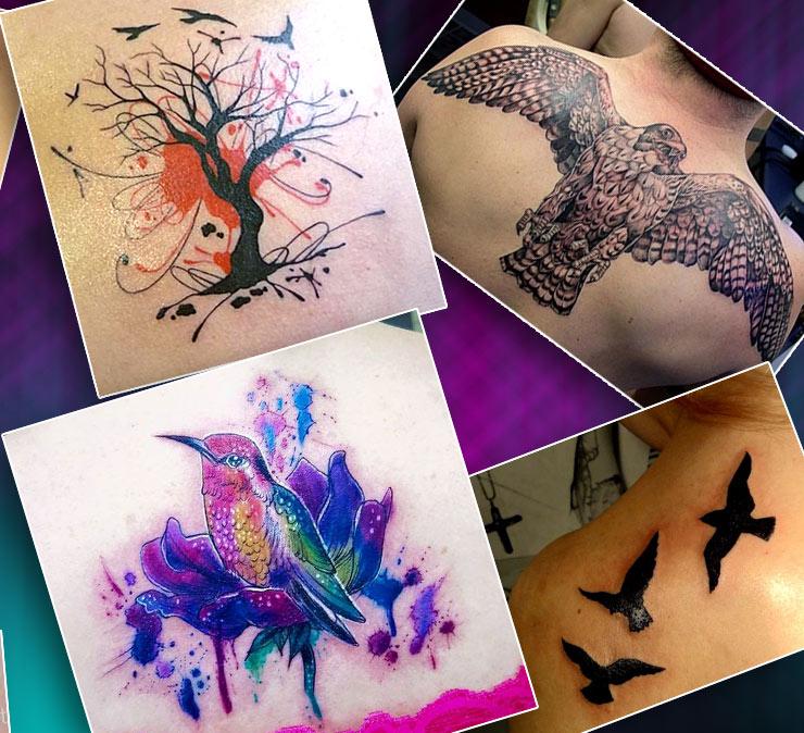 Татуировки на спине птицы
