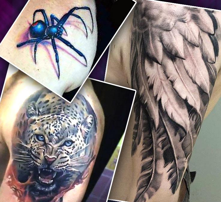Цветные татуировки на плече паук, пантера, крылья