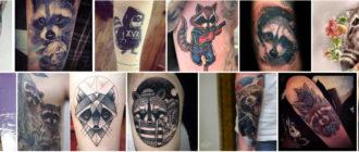 разные фотографии тату енота