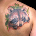 Татуировка с енотом на спине