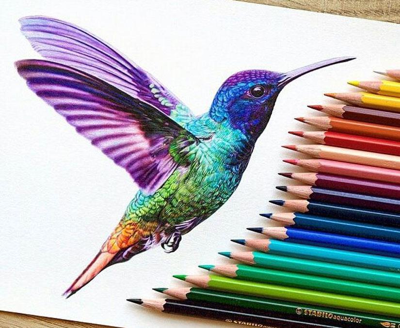 Яркий эскиз тату колибри