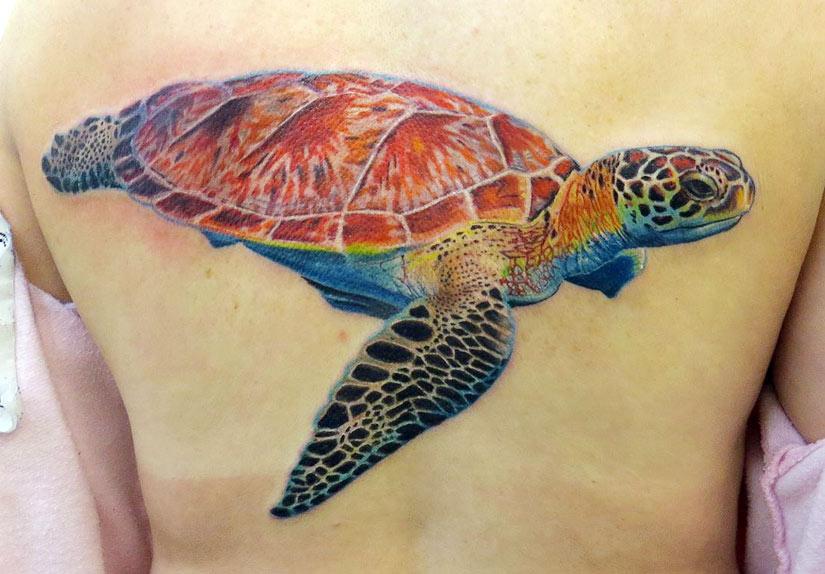 цветная татуировка с черепахой