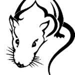 Эскиз тату крысы