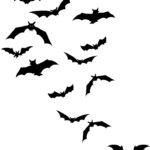 Эскиз тату с летучих мышей