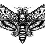 Эскиз тату смерть, мотылек с черепом