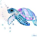 Эскиз тату черепахи акварель