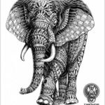 Объемный эскиз слона