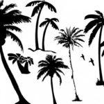 Эскиз тату с пальмами