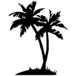 Эскиз тату с пальмой