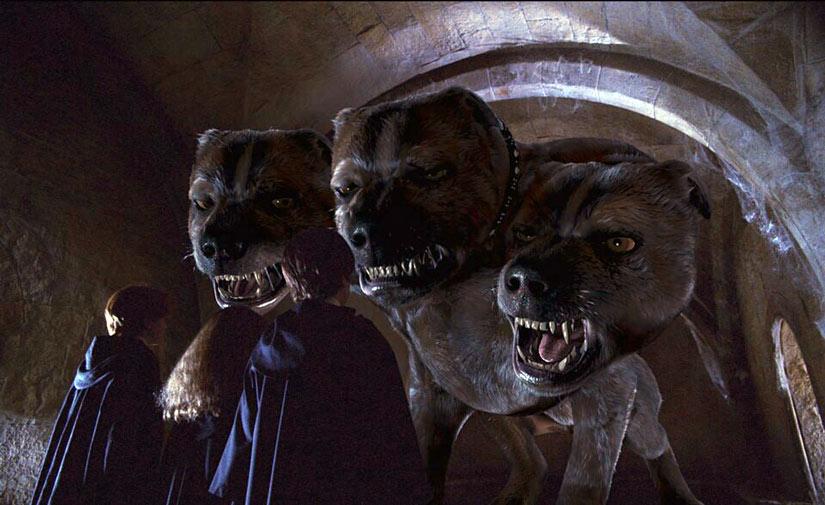 Гарри Поттер и трёхголовая собака