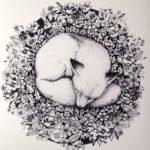 Женский эскиз лисы свернувшийся в клубок