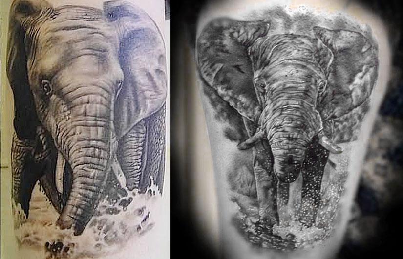 Тату купающегося слона