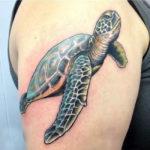 Татуировка с черепахой реализм на руке