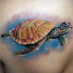Татуировка с черепахой реализм
