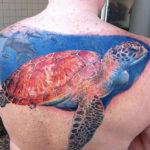 Тату черепахи на спине