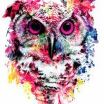 Эскиз татуировки совы