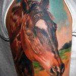 Татуировка головы коня