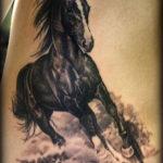 Тату лошади на боку