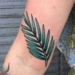 Татуировка ветви пальмы