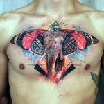 Слон с ушами от бабочки, абстракция