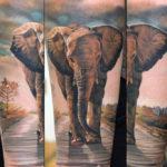 Тату слона реализм