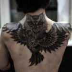 Тату совы на спине