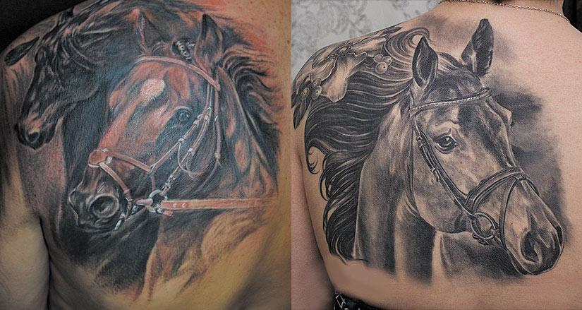 Тату домашней лошади