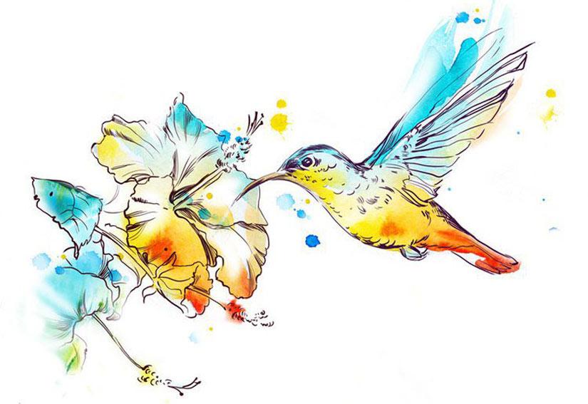 Эскиз колибри с цветами