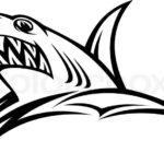Эскиз тату головы акулы