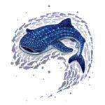 Эскиз тату китовой акулы