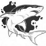 Крутой эскиз акулы
