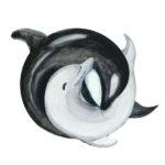 Эскиз дельфина инь янь