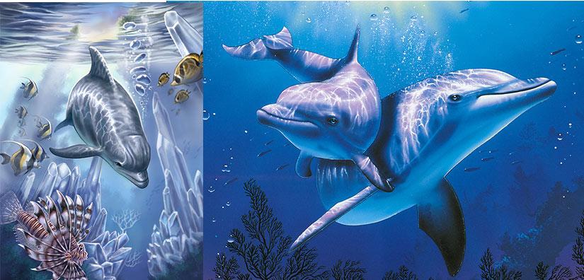 Эскиз тату в стиле реализм, дельфин и разноцветные рыбки