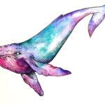 Эскиз тату кит, акварель