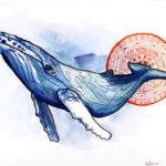 Эскиз тату голубой кит