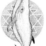 Эскиз тату кит на фоне круга