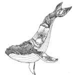 Эскиз тату кит с цветами