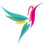 Эскиз тату колибри цветной мимнимализм