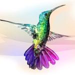 Эскиз тату колибри полигонное