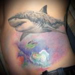 Тату акулы в пастельных тонах