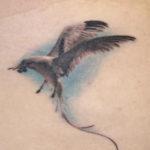 Татуировка чайка в полете, реализм