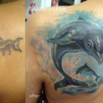 Перекрытие старой тату дельфином
