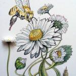 Эскиз тату ромашки и пчелы