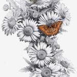 Эскиз тату ромашки с бабочкой