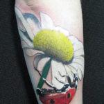 Релистичная татуировка с ромашкой и божьей коровкой