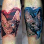 Кошка, реализм