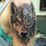 Волк у девушке на руке