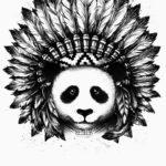 Панда индеец